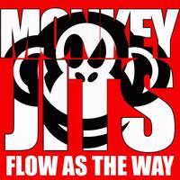 Crazy Monkey Defense : Brazilian Jiu Jitsu (Monkey Jits) featured image
